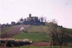 Foto panormaica castello di Montalbo