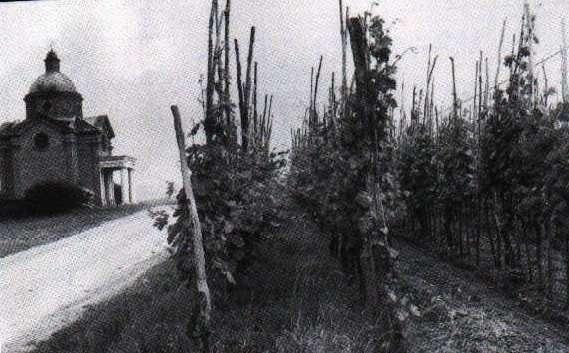 Foto storica Ziano Piacentino